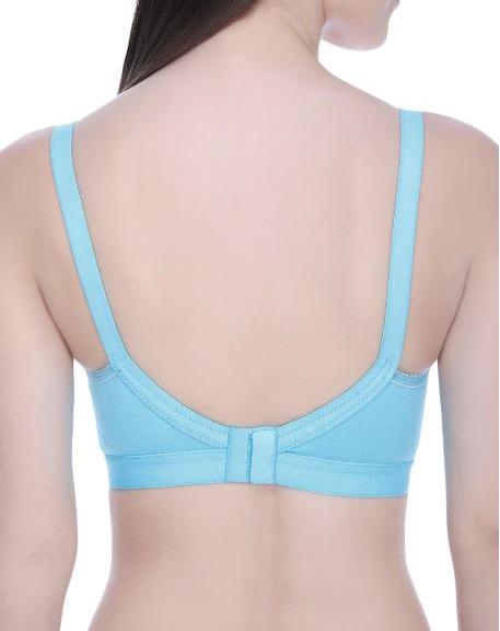 Women Solid Blue Bra