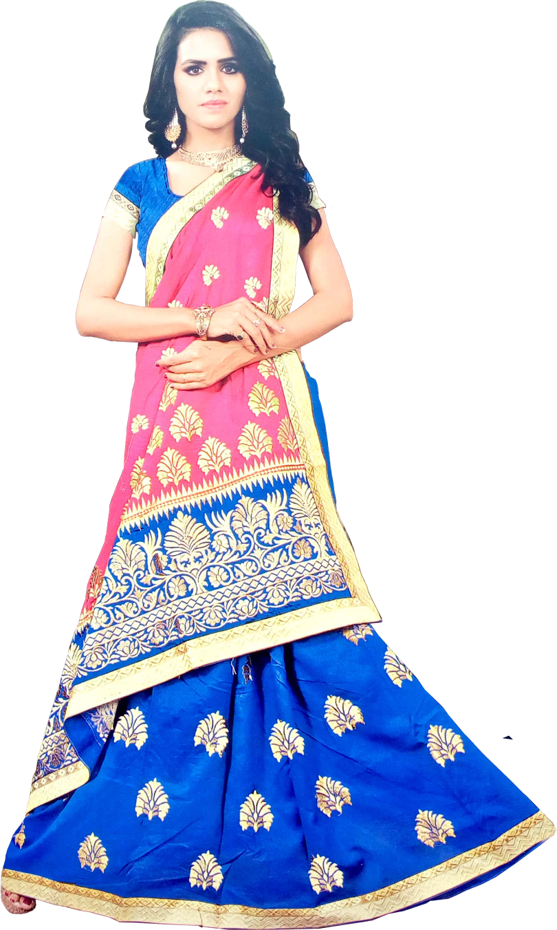 Embroidered Bollywood fancy saree